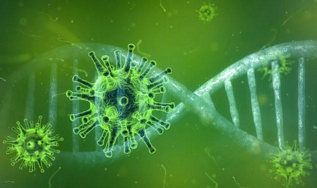 origen del coronavirus